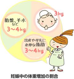 妊娠中の体重増加の内訳図:赤ちゃんが3kg、胎盤、羊水などが3~4kg、出産や母乳の分泌に必要な脂肪の貯えが3~4kg